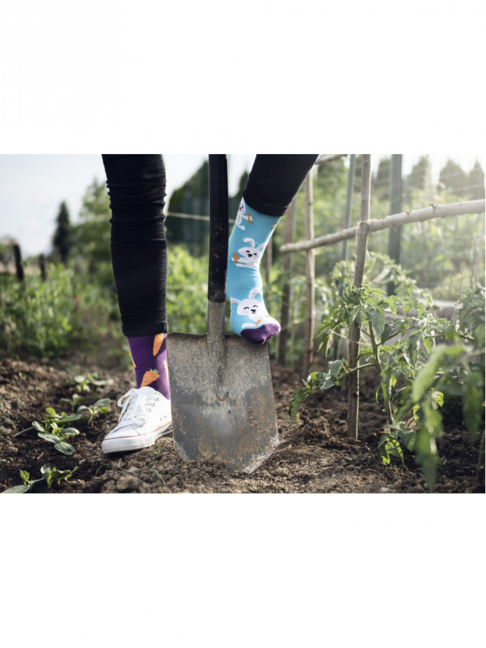 Ponožky Zajačik